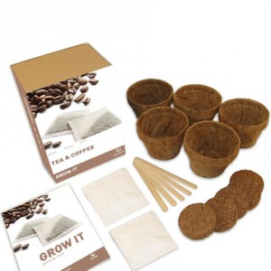 Grow your own tea and coffee gift box - Find Me A Gift