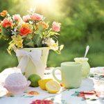 Top Tips for DIY Landscaping Your Back Garden